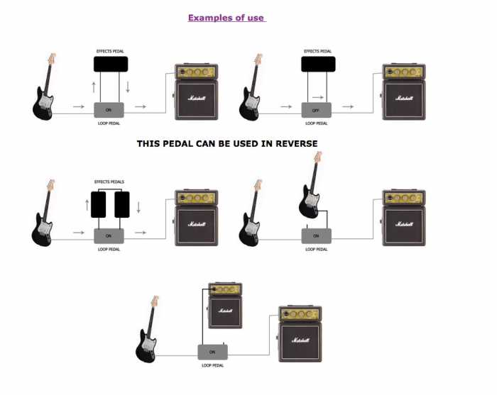 Guitar_Loop_Pedal_-_True_Bypass_Looper_-_Effects_FX___eBay.jpg